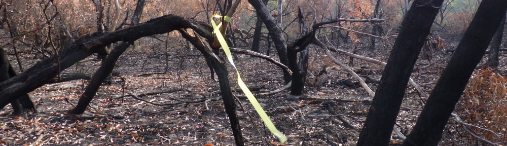 Providence Ponds Flora and Fauna Reserve burn 3 May 2017 – nationally endangered New Holland Mice incinerated