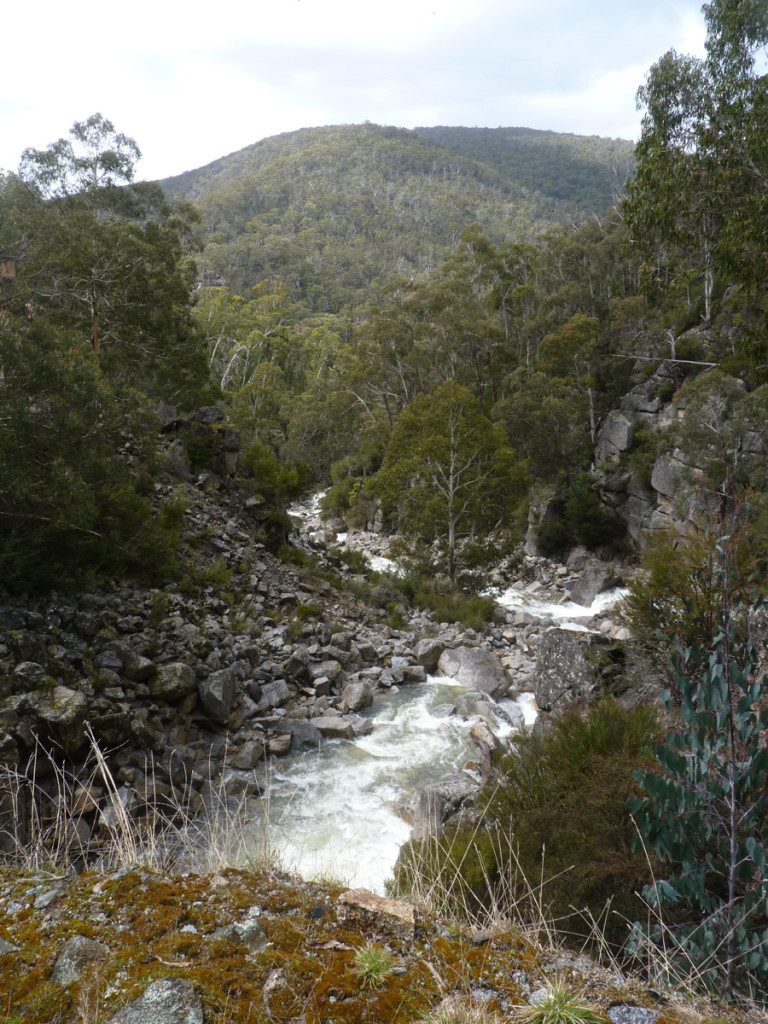 Burrungabugee 3b, flowing below weir & bridge 5.10.17